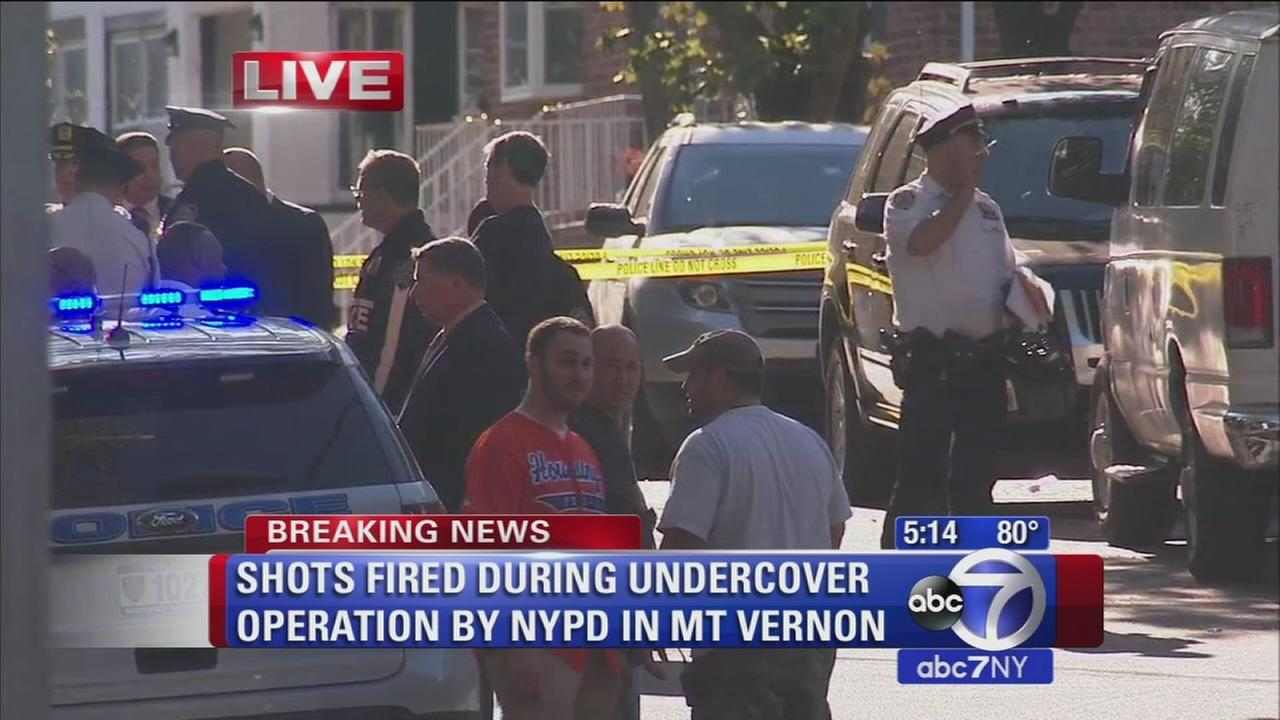 Shots fired during undercover operation by NYPD in Mount Vernon