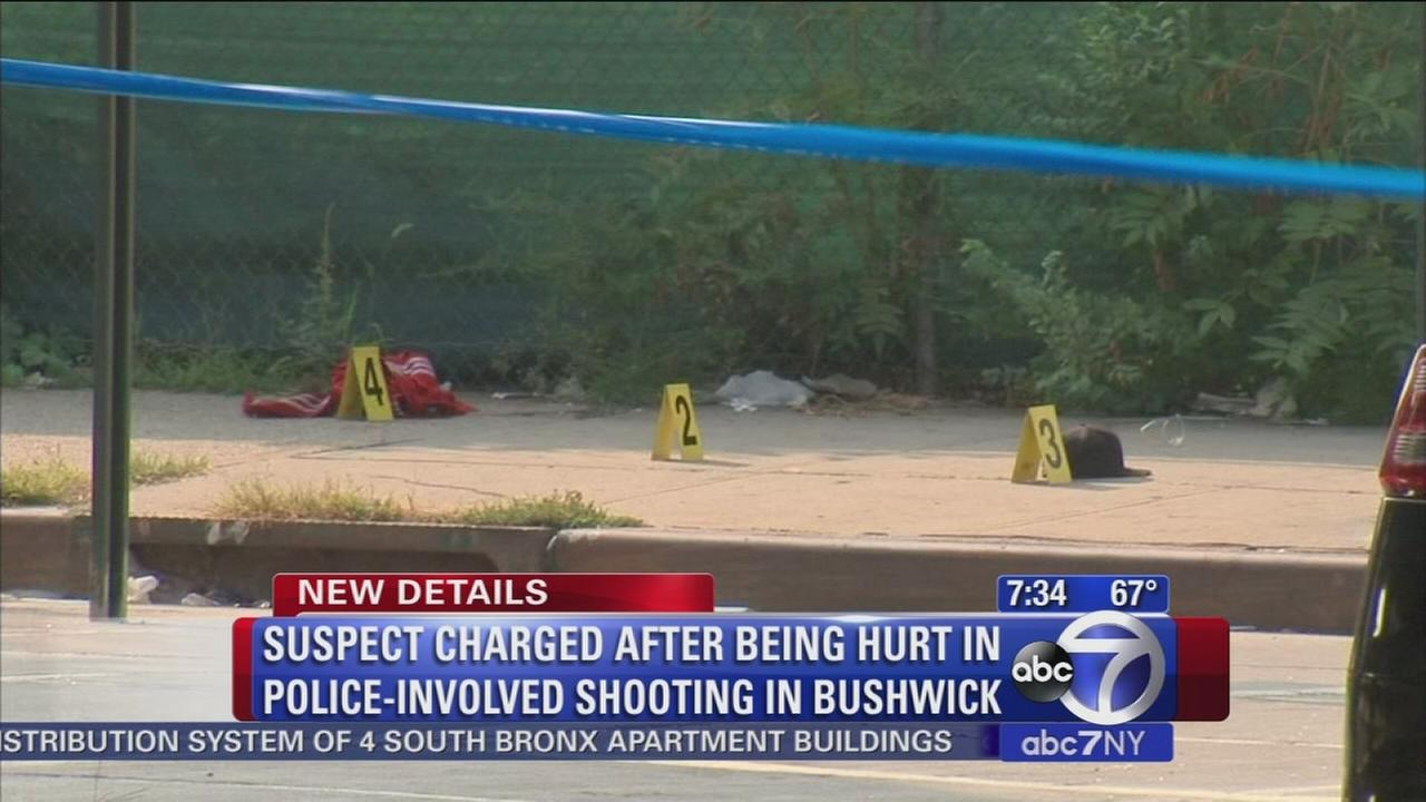 090515-wabc-bushwickshooting-thorne7am-post