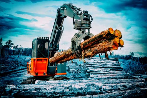 <div class='meta'><div class='origin-logo' data-origin='none'></div><span class='caption-text' data-credit='Shutterstock'>1.	Logging workers</span></div>