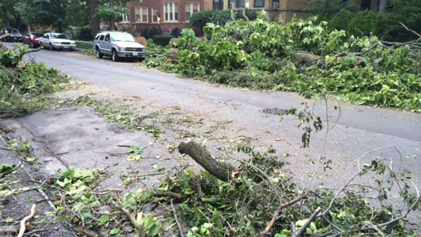 Fallen trees lined streets in Chicago's Andersonville neighborhood the morning affter a day of severe weather. <span class=meta>WLS Photo/ Victoria Blount</span>