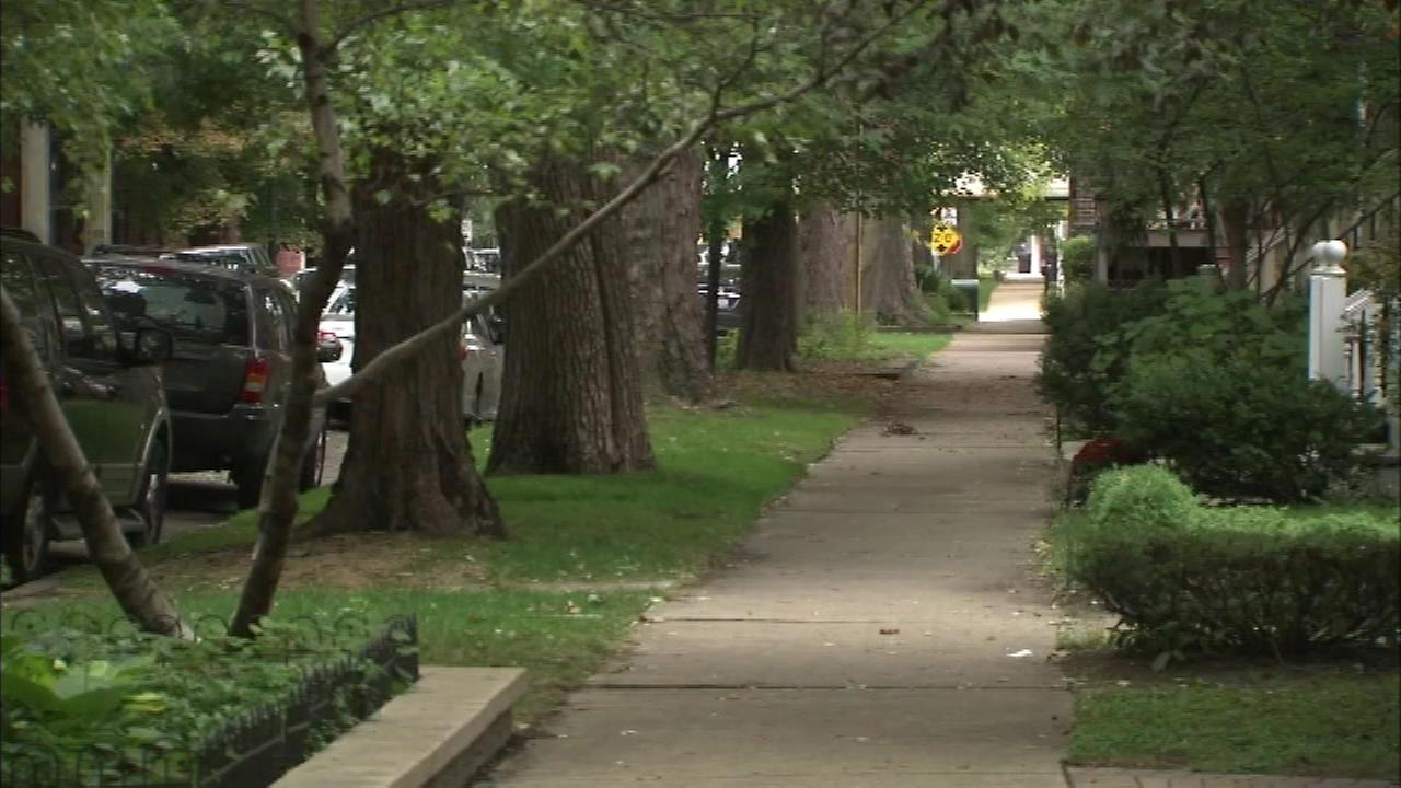 Two more victims in string of North Side robberies