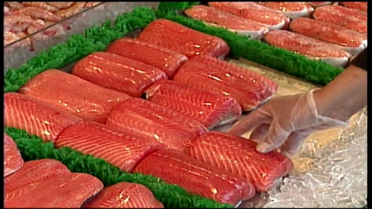 farm raised salmon The pcbs come from the fish meal and fish oil the salmon is fed farmed salmon in us grocery stores was tested, and because of the higher fat content of farmed fish (fat stores toxins really well), 16 times more pcb's were found in.