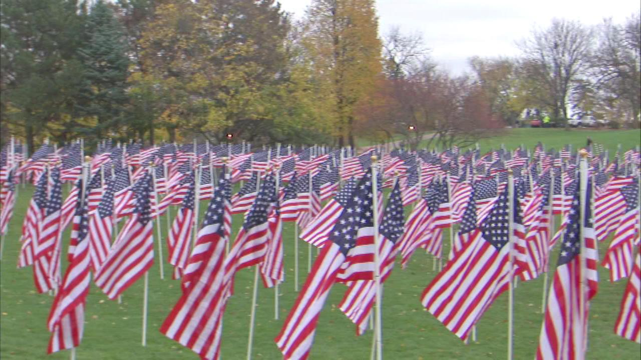 Volunteers helped the park district set up the Healing Field of Honor on Rotary Hill in Naperville.