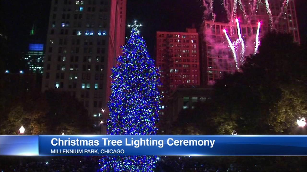 Chicagos official Christmas tree is sparkling in its new home in Millennium Park.