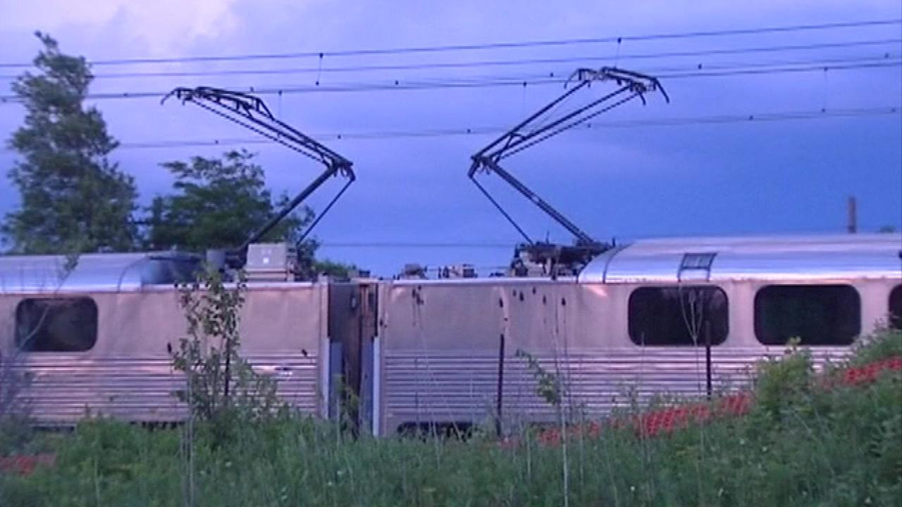 Police in south suburban University Park say a juvenile was killed after going into a Metra train yard.