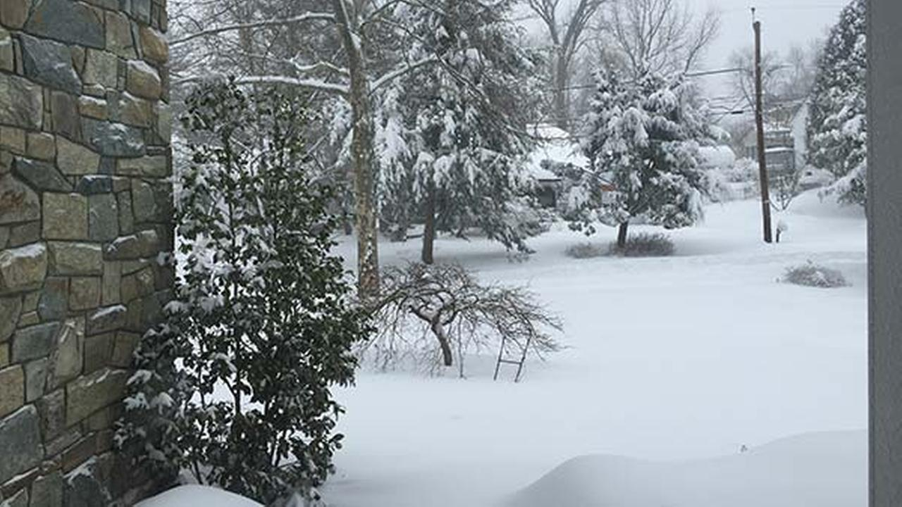 Snow in Chevy Chase, Md., two miles from Washington, D.C., on Saturday, Jan. 23, 2016.Alison Tenenbaum