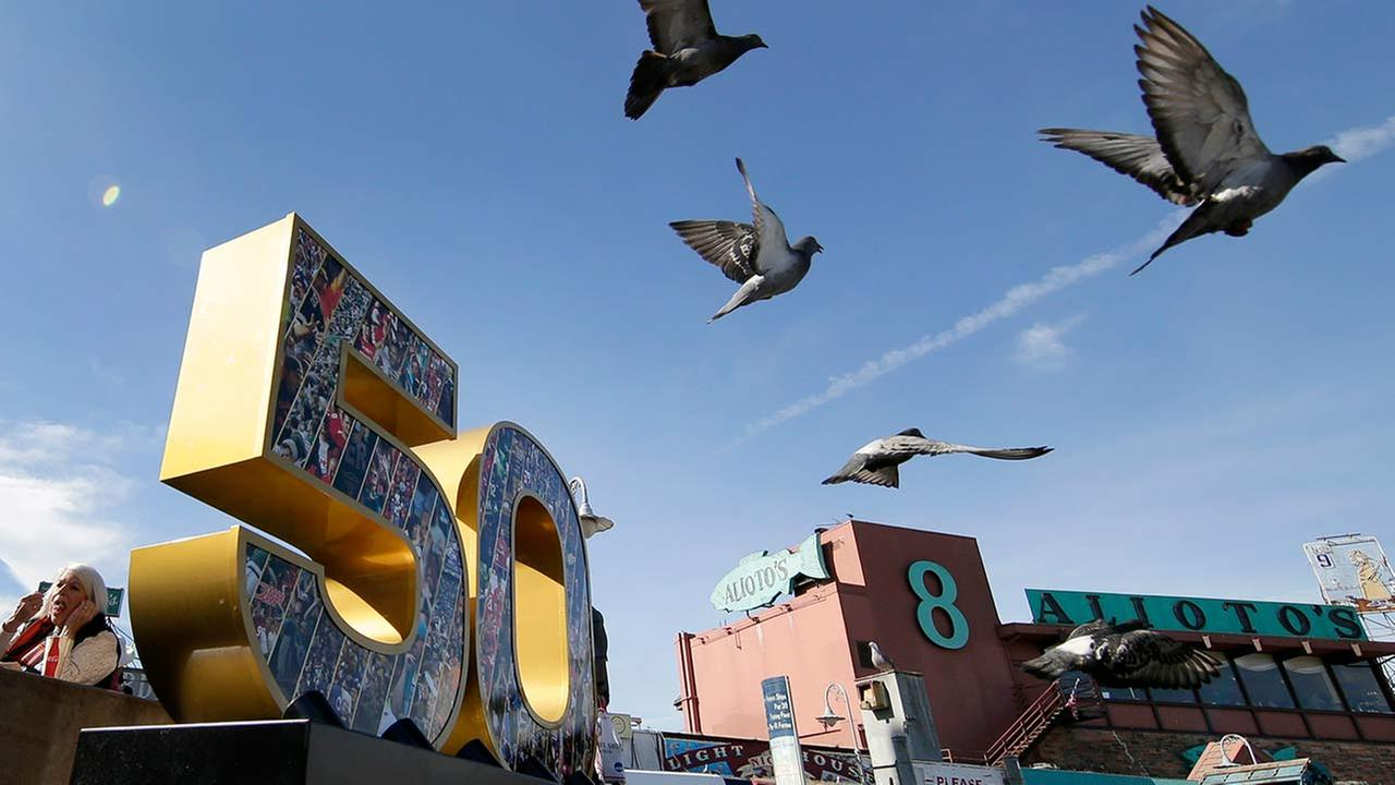 Sea gulls fly past a Super Bowl 50 sign on Feb. 4, 2016, at Fishermans Wharf in San Francisco.