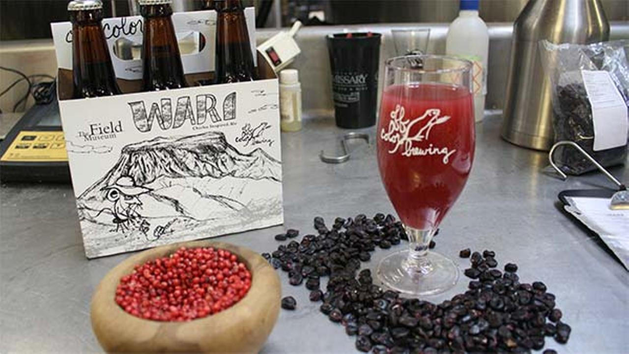 Field Museum launches beer inspired by ancient recipe