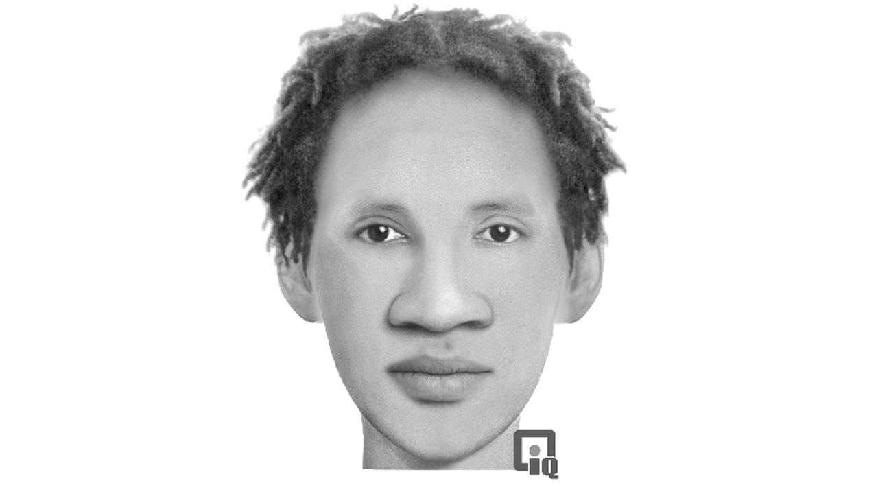 Chicago police released a sketch of a suspect in a robbery and sexual assault last month in the Greater Grand Crossing neighborhood.