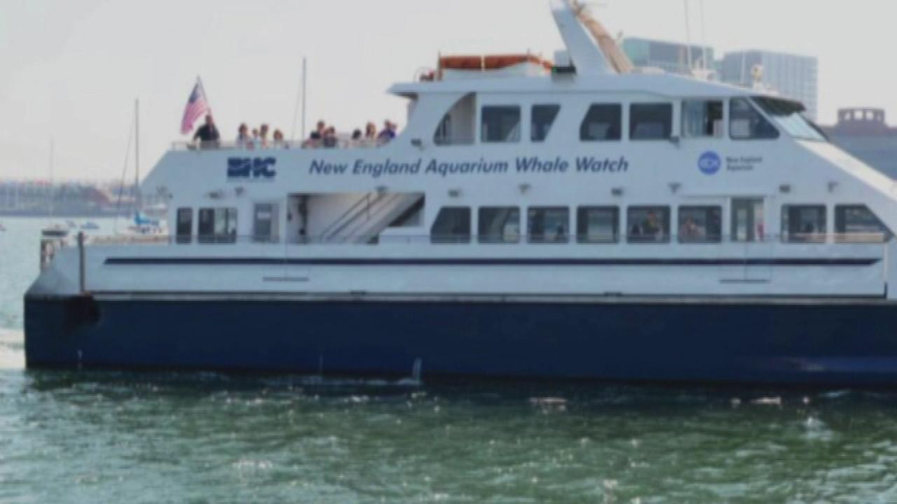 A group of whale watchers expecting only a three-hour tour got much more after their boat was snagged by a lobster trap rope off Massachusetts and they were forced to spend a long