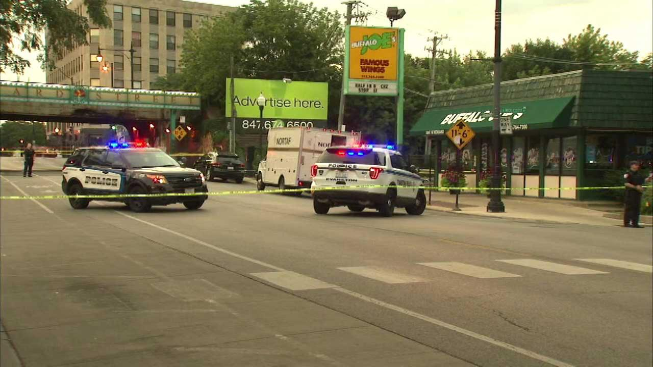 A man was shot and killed on Howard Street near Chicago Avenue in Evanston early Monday, police said.