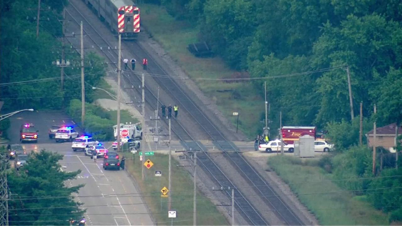 A person was struck by a Metra train Monday afternoon on the Milwaukee District / North Line in north suburban Morton Grove.