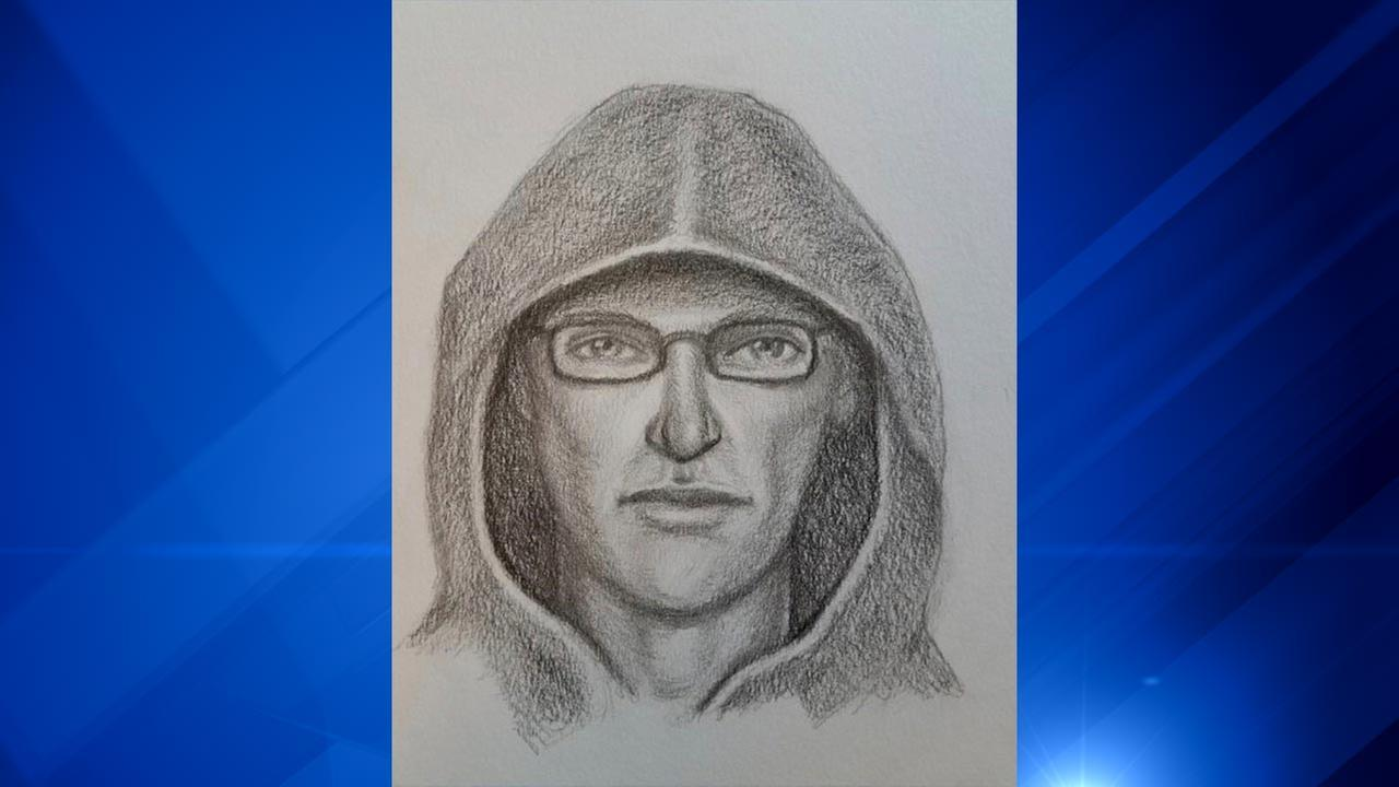 The FBI has released a sketch of a person of interest in a pipe bomb explosion at an East Chicago, Ind. post office.