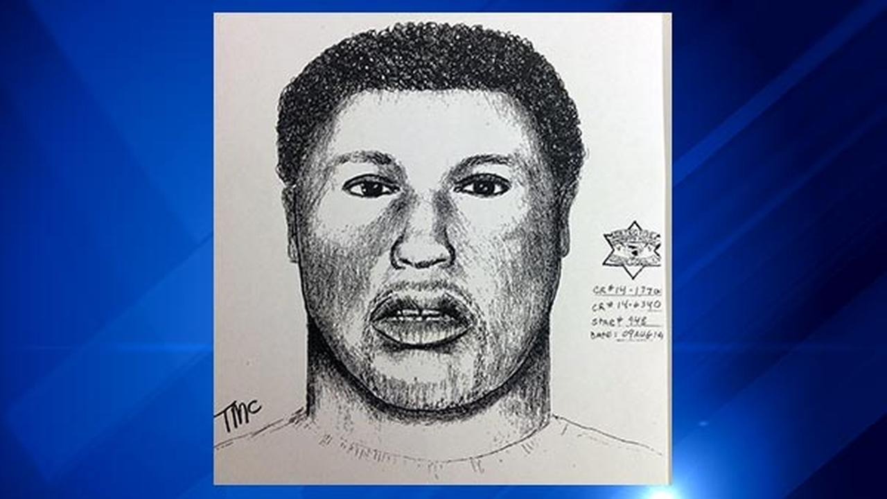 Richton Park Police released a sketch of the suspect in a fatal shooting in the south suburb.