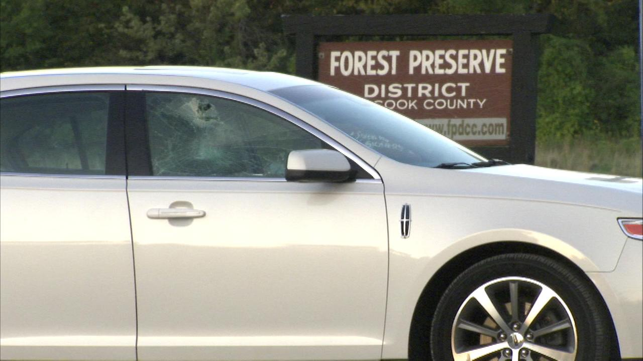 One person was wounded in a shooting in the Cook County Forest Preserve in southwest suburban Oak Forest.