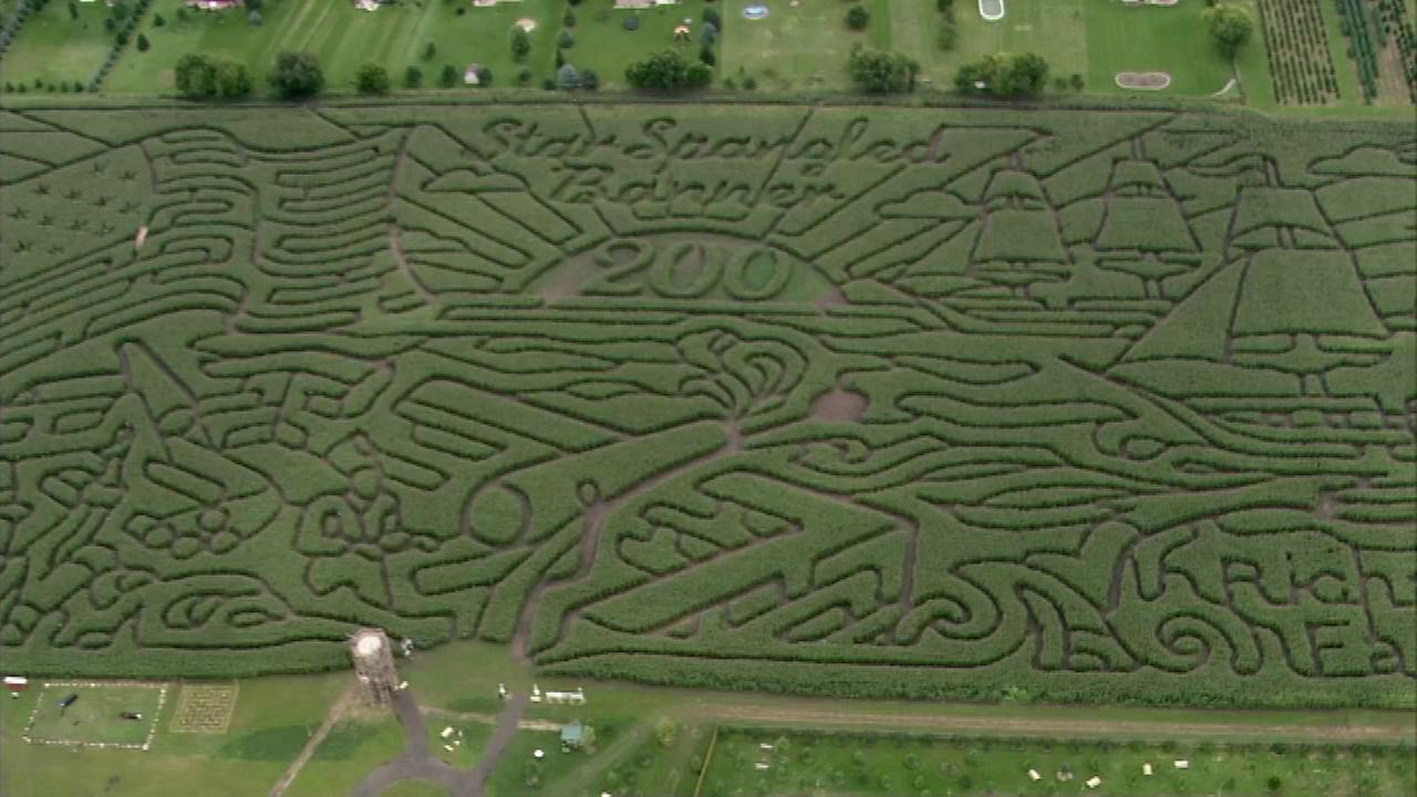 Corn maze at Richardson Farms in Spring Grove.