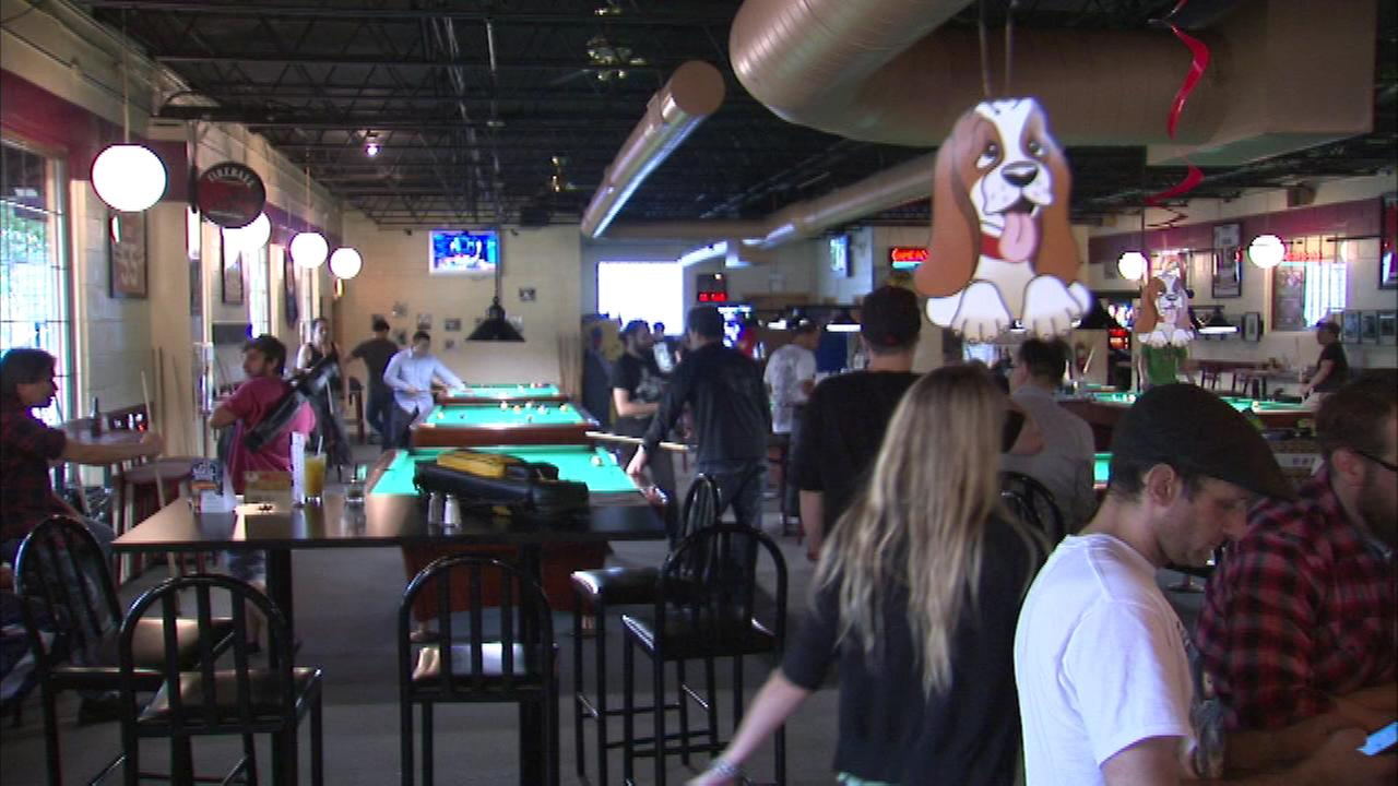 Pool players chalked up their cues to help mans best friend at City Pool Hall where they raised money for the Trio Animal Foundation.