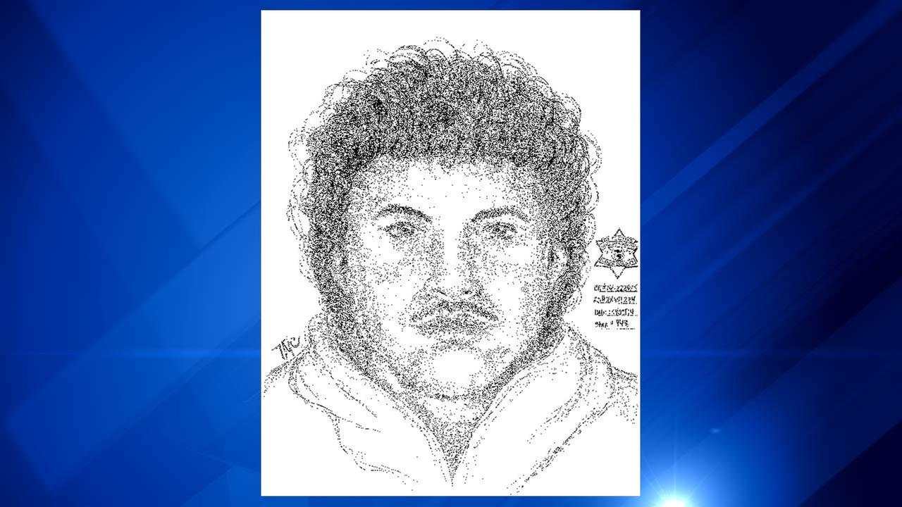 Chicago Police released a sketch of a suspect accused of being naked or partially clothed while slapping women on their backsides.