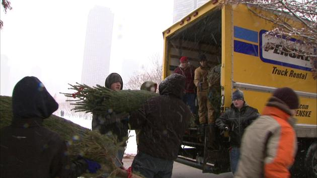 Christmas tree recycling locations in Chicago | abc7chicago.com