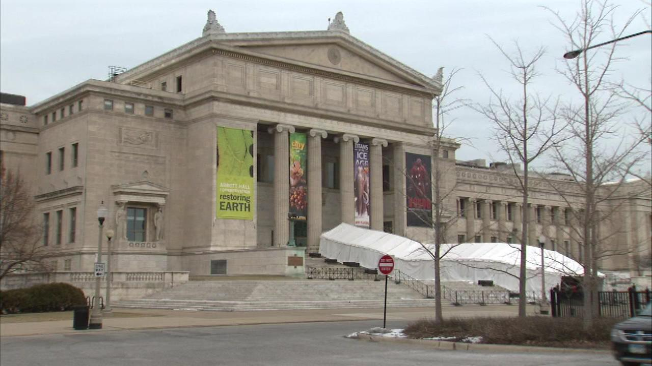 Free February starts Sunday at Chicagos Field Museum of Natural History.