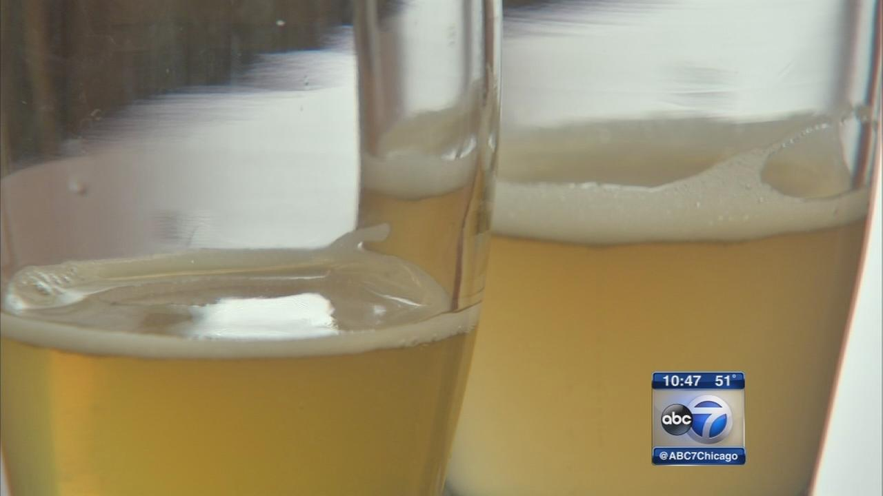 Kendall College offers beer education