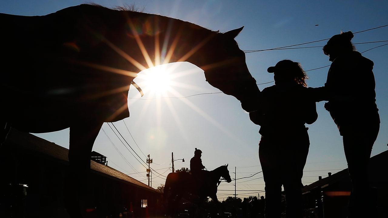 A horse gets a bath after a morning workout at Churchill Downs on May 1, 2015, in Louisville, Ky.AP Photo/Charlie Riedel