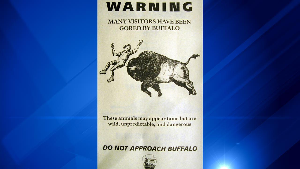 This photo taken on June 3, 2015 of a pamphlet distributed by the National Park Service to people entering Yellowstone National Park warns visitors not to get too close bison.