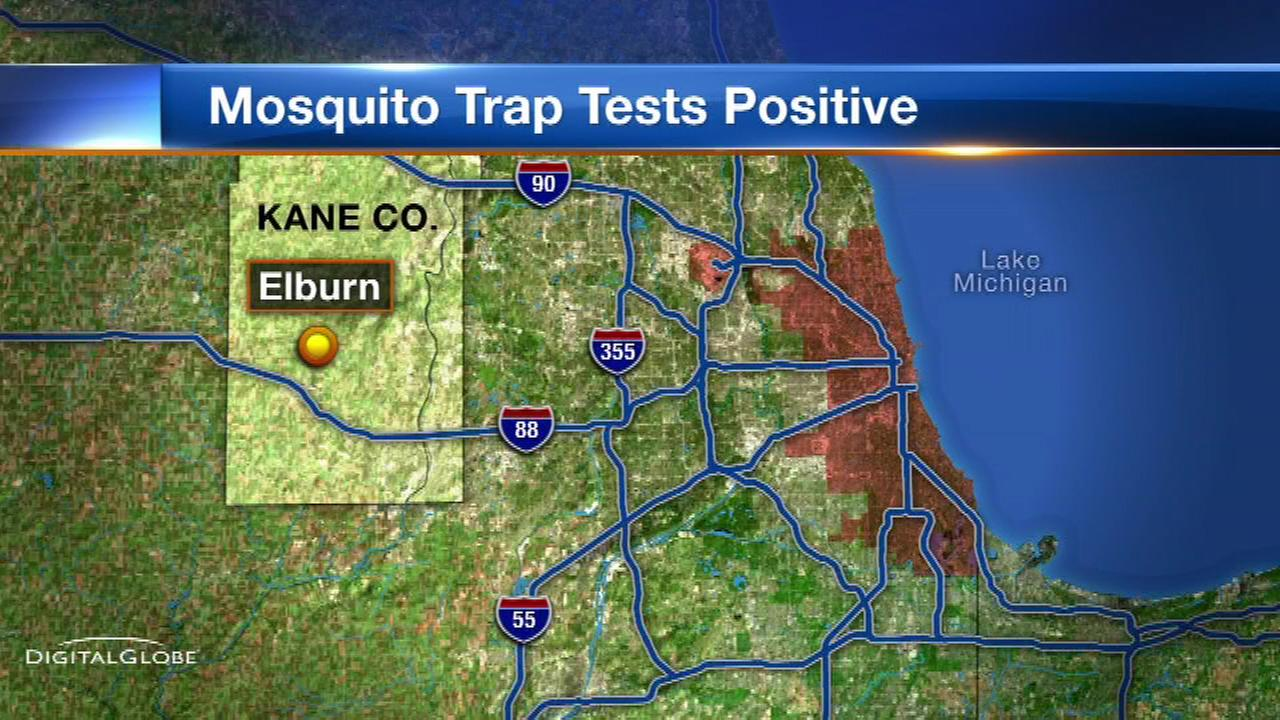 Mosquito trap tests positive for West Nile virus in west suburban Elburn