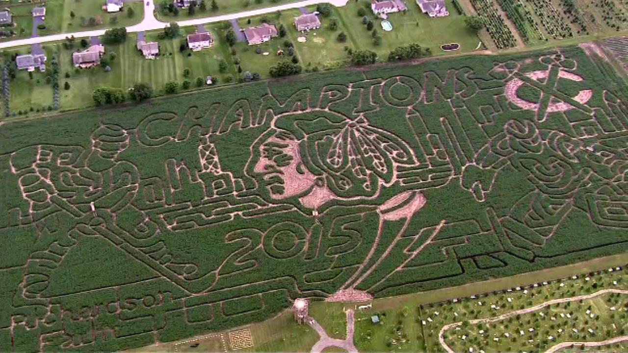 Farm designs Blackhawks-themed corn maze