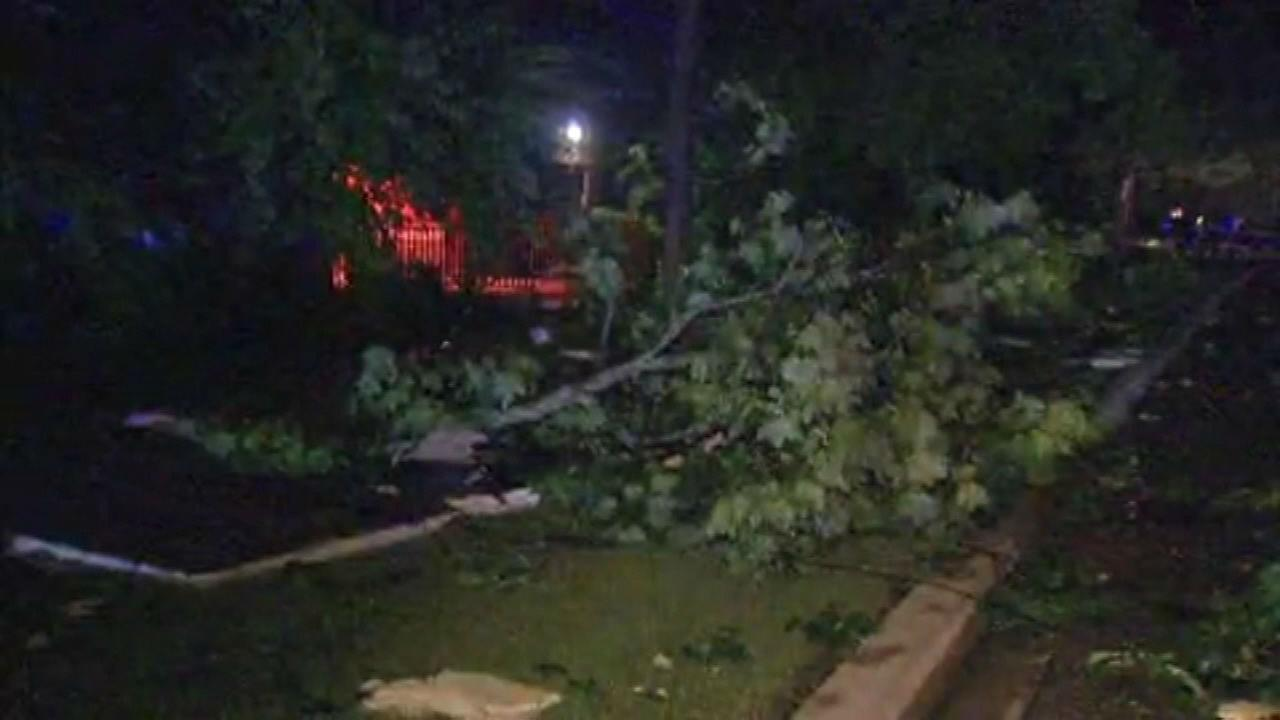Grayslake hit with severe storms Sunday
