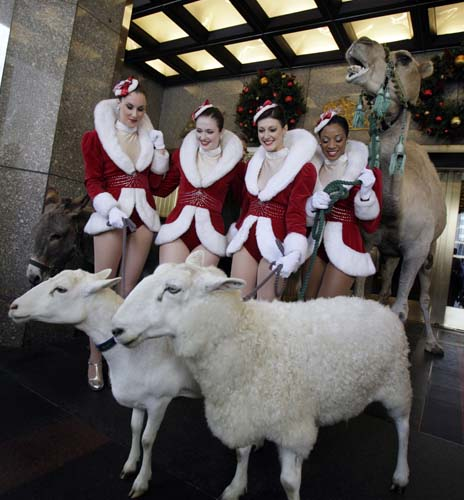 <div class='meta'><div class='origin-logo' data-origin='none'></div><span class='caption-text' data-credit='AP Photo/Richard Drew'>A camel and sheep pose with Rockettes as the animals arrive for rehearsals for the &#34;78th annual Radio City Music Hall Christmas Spectacular&#34; in New York.</span></div>