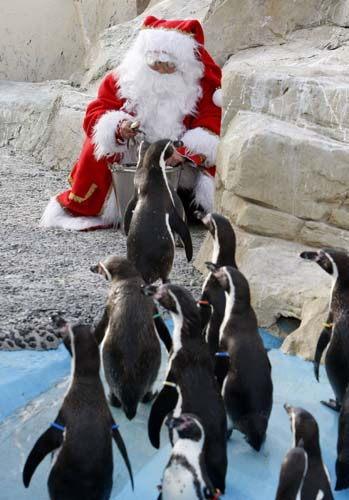 <div class='meta'><div class='origin-logo' data-origin='none'></div><span class='caption-text' data-credit='AP Photo/Lionel Cironneau'>A man dressed in Santa Claus feeds humboldt penguis at the animal exhibition park Marineland in Antibes, southern France.</span></div>