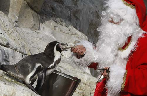 <div class='meta'><div class='origin-logo' data-origin='none'></div><span class='caption-text' data-credit='AP Photo/Lionel Cironneau'>A man dressed in Santa Claus feeds an humboldt penguin at the animal exhibition park Marineland in Antibes, southern France.</span></div>