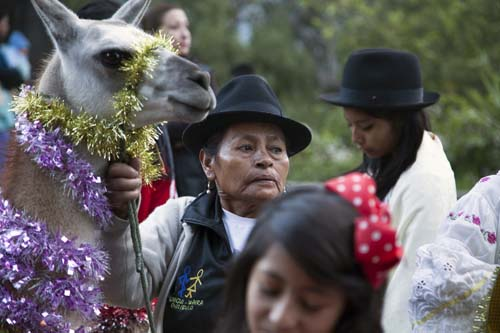 <div class='meta'><div class='origin-logo' data-origin='none'></div><span class='caption-text' data-credit='AP Photo/Ana Maria Buitron'>A woman from the Chilibulo community holds her llama on a leash, which she decorated with tinsel, during a parade on the seventh day of the &#34;Novena&#34; in Quito, Ecuador.</span></div>