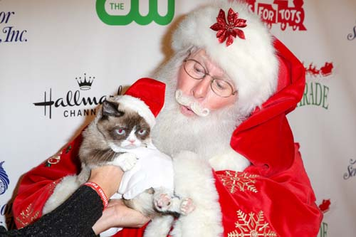 <div class='meta'><div class='origin-logo' data-origin='none'></div><span class='caption-text' data-credit='Rich Fury/Invision/AP'>Grumpy Cat arrives at the 84th Annual Hollywood Christmas Parade in Los Angeles.</span></div>