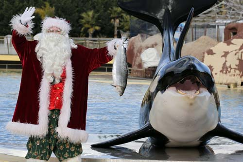 <div class='meta'><div class='origin-logo' data-origin='none'></div><span class='caption-text' data-credit='AP Photo/Lionel Cironneau'>A man dressed in a Santa Claus costume poses for photographers with a killer whale named &#34;Valentin&#34; , at the animal exhibition park Marineland in Antibes, southern France.</span></div>