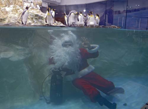 <div class='meta'><div class='origin-logo' data-origin='none'></div><span class='caption-text' data-credit='AP Photo/Lionel Cironneau'>A man dressed as Santa Claus poses for photographers with king penguins at the Marineland animal exhibition park in Antibes, southeastern France.</span></div>