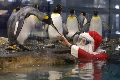 <div class='meta'><div class='origin-logo' data-origin='none'></div><span class='caption-text' data-credit='AP Photo/Lionel Cironneau'>A man dressed as Santa Claus interacts with king penguins at the Marineland animal exhibition park in Antibes, southeastern France.</span></div>