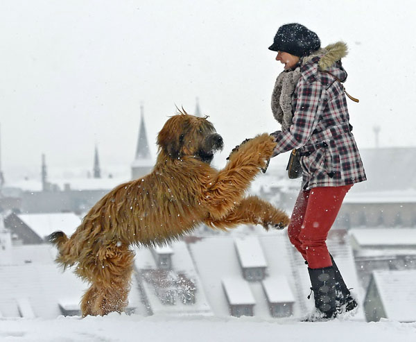 <div class='meta'><div class='origin-logo' data-origin='none'></div><span class='caption-text' data-credit='(AP Photo/Jens Meyer)'>Sabine Conrad plays with her French sheepdog El Lobo in front of the snow covered skyline of Erfurt, central Germany, Thursday, Jan. 17, 2013.</span></div>