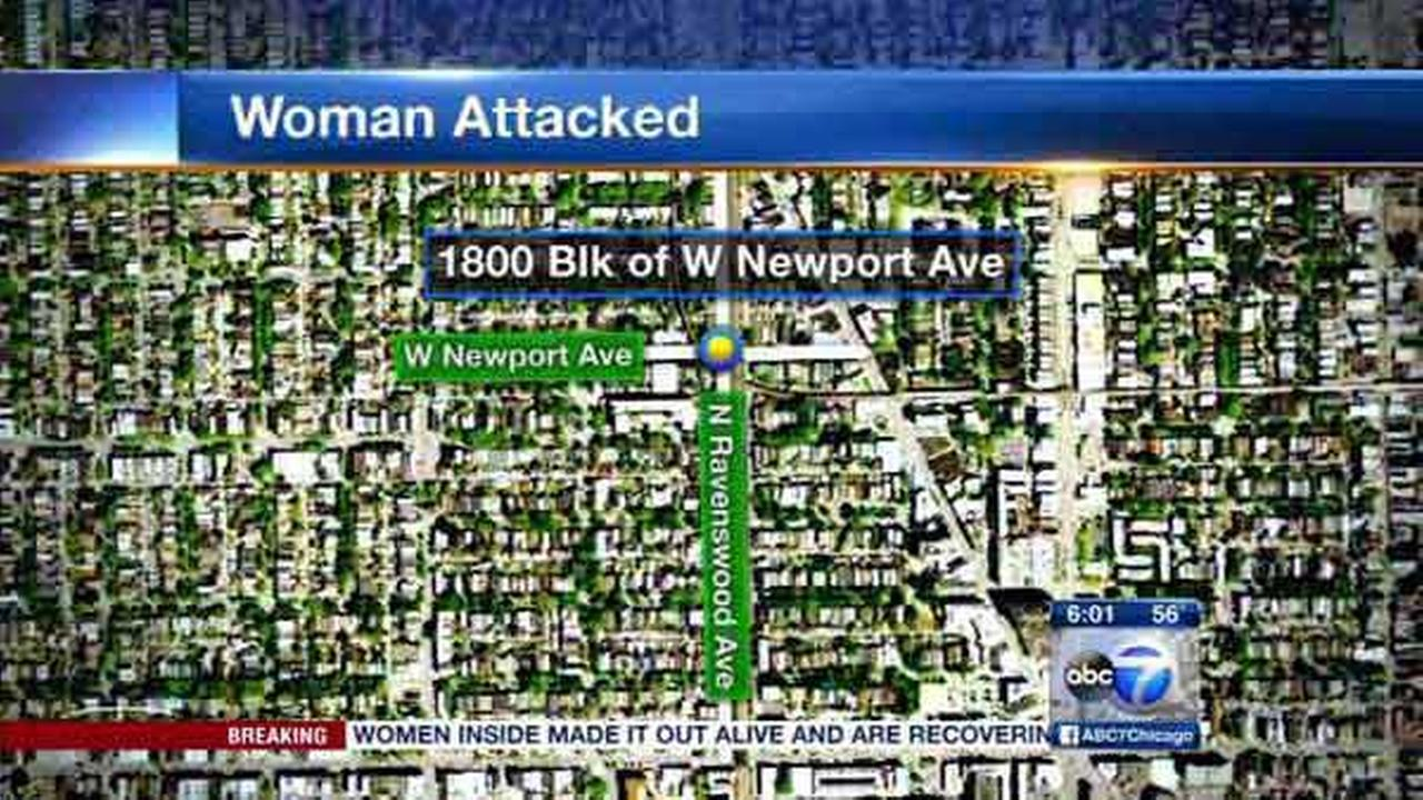 Police are looking for a robber who attacked a woman in her yard in Chicagos Roscoe Village neighborhood.