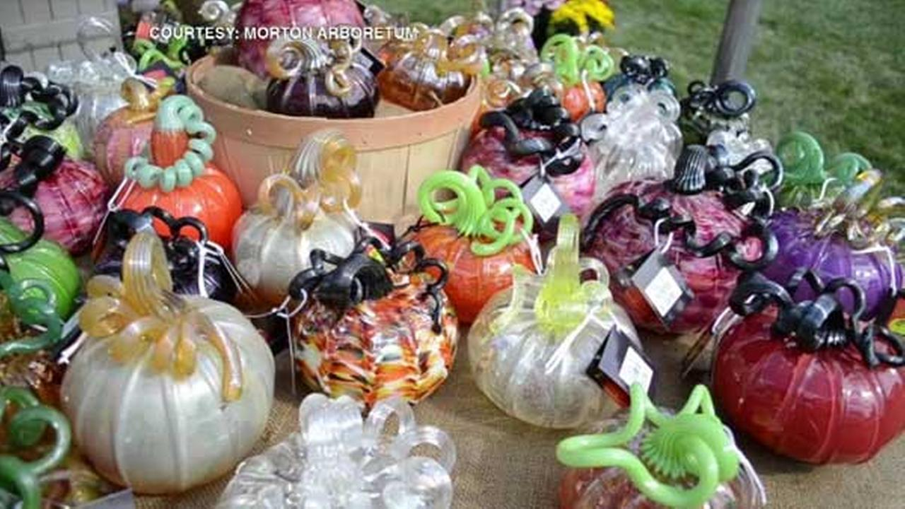 Hand-blown glass pumpkins are on display at The Morton Arboretum in west suburban Lisle.
