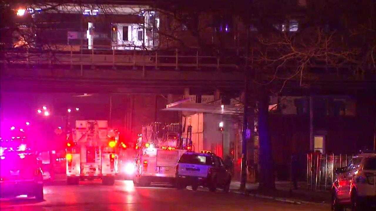 Woman fatally struck by Pink Line train at Kedzie stop