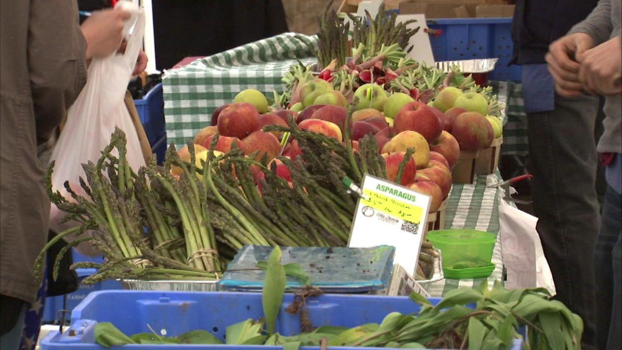 Green City Market opens for 18th season