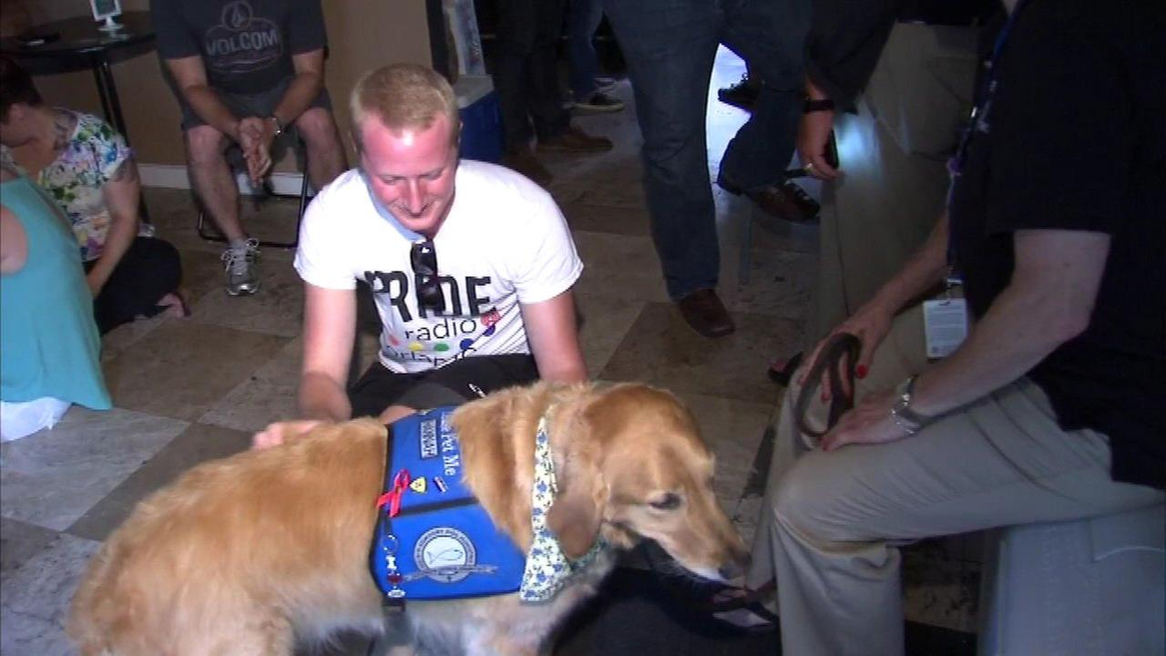 A team of comfort dogs from north suburban Northbrook arrived in Orlando Monday.