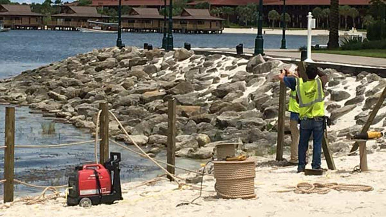 Workers are installing temporary barriers and more signs where an alligator killed a 2-year-old boy at the Walt Disney World Resort.Blanca Rios