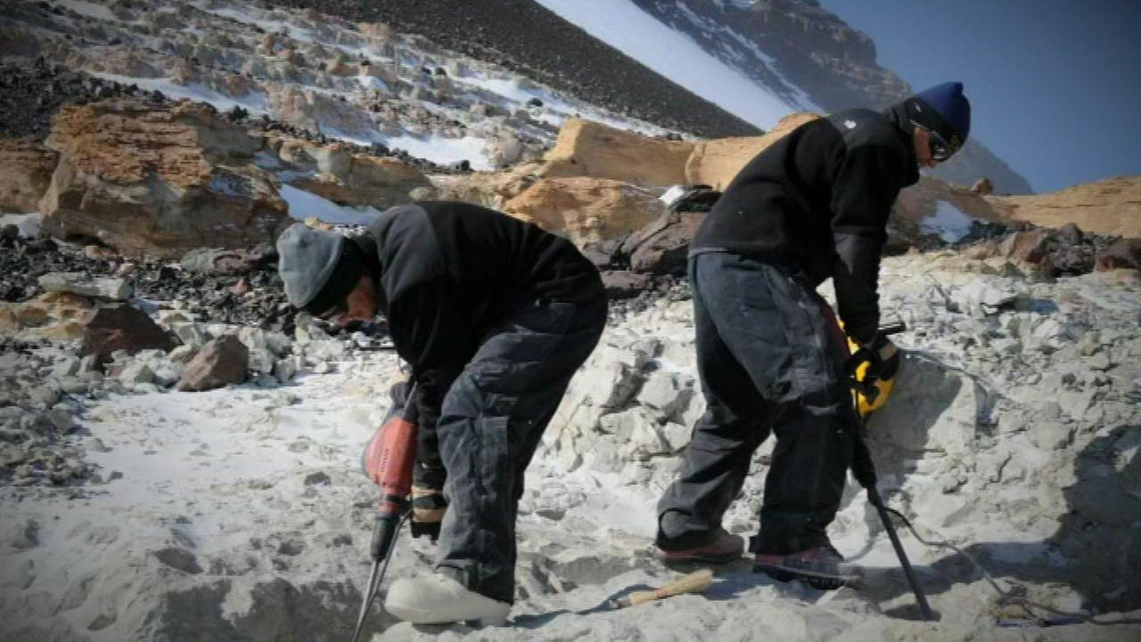 Field Museum planning Antarctic dinosaurs exhibit