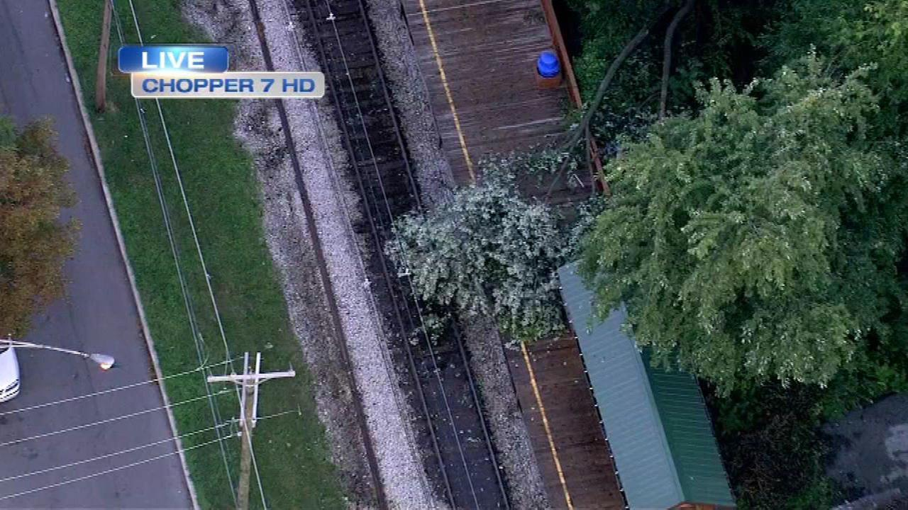 Metra Electric Blue Island trains running after tree cleared from tracks