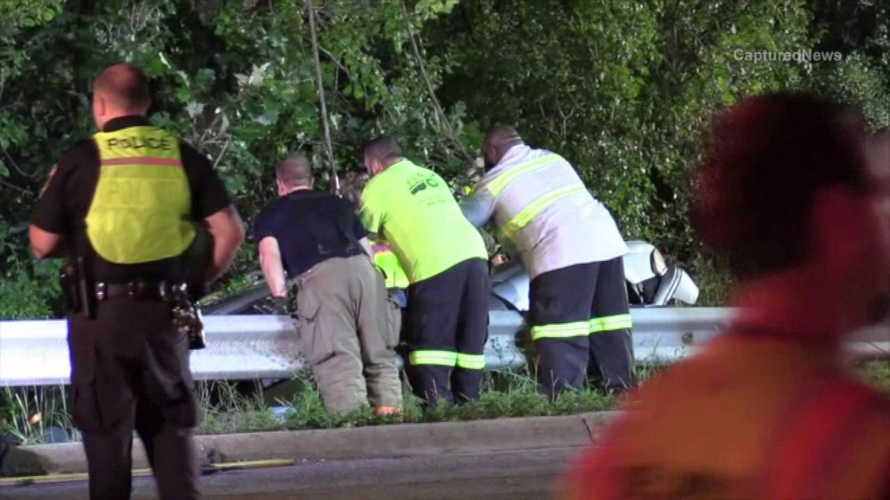 Two males fell into the Des Plaines River after their car crashed into a guardrail.