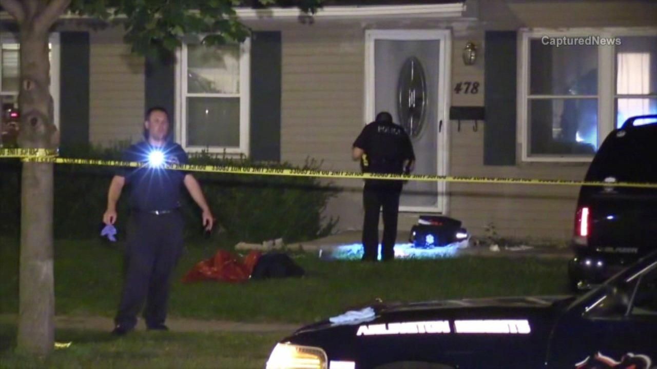 4 people, dog stabbed in Buffalo Grove break