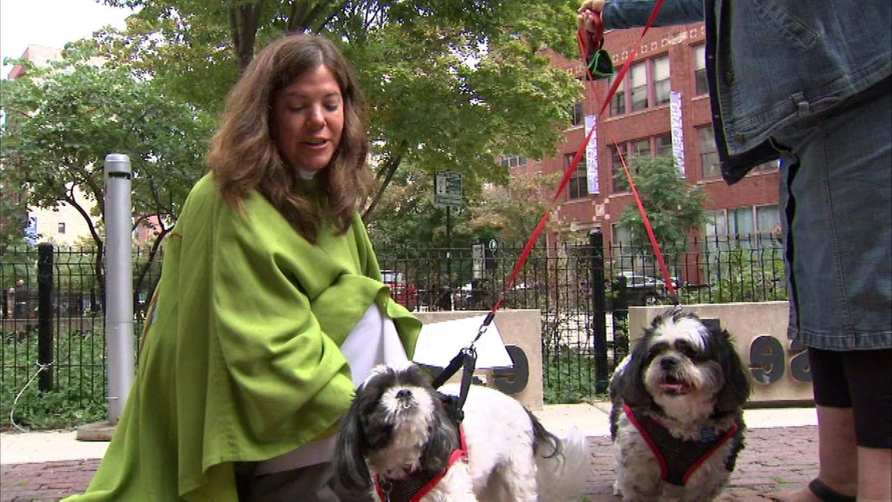 Pets blessed during South Loop ceremony